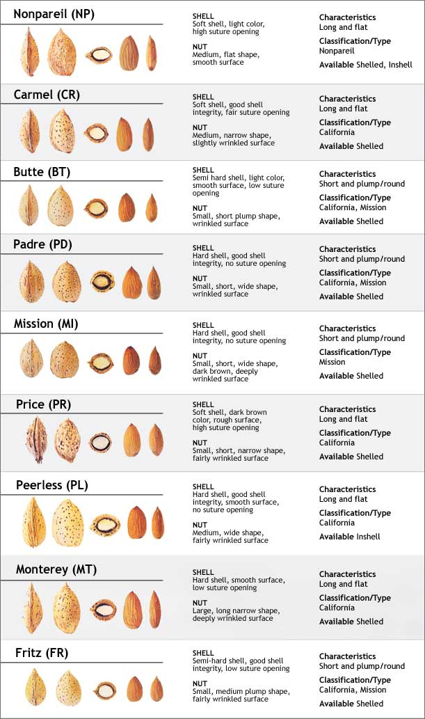 California almond varieties - Growing french walnuts for a profit ...